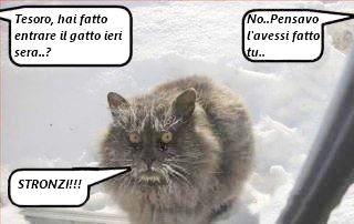 Satirele febbraio 2012 for Email senatori italiani
